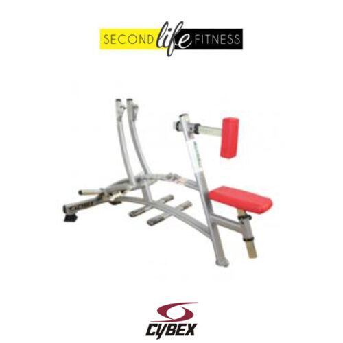 Cybex Plate Loaded Row